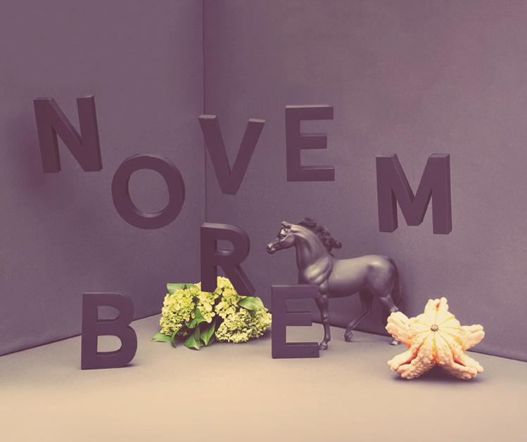 elizabethlaferriere_bleury_novembre