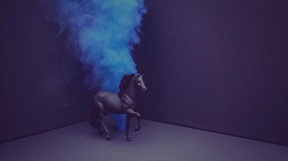 elizabethlaferriere_bleury_novembre_cheval